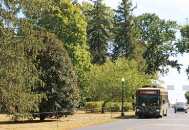 Trolley at Keeneland